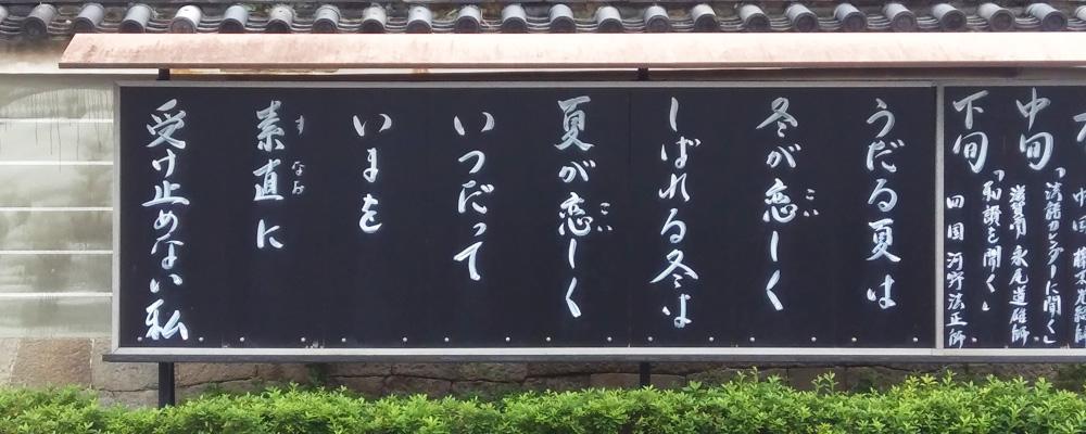 本山佛光寺 今月の標語(6月)
